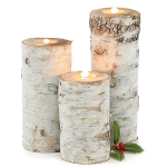Birch Tea Light Candle Holders by burton + Burton