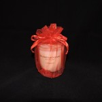 Scentsational Apple Cinnamon Soy Candle