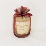 Scentsational Soy Apple Cinnamon  Candle